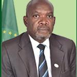 Hon. Mudford Z Mwandenga,
